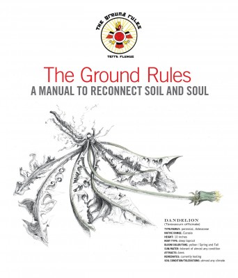 thegroundrules